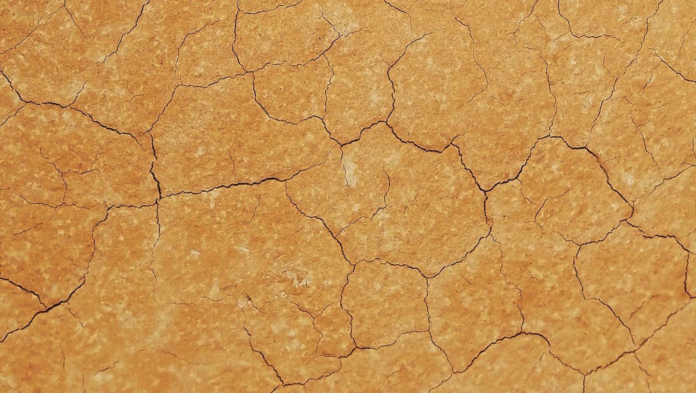 Article symbolique des couleurs : le marron
